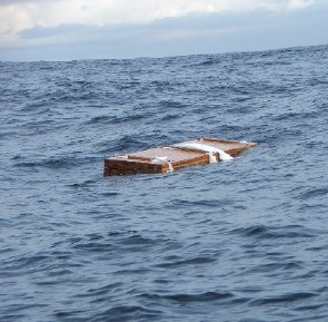 A pallet of wood floating in the Atlantic